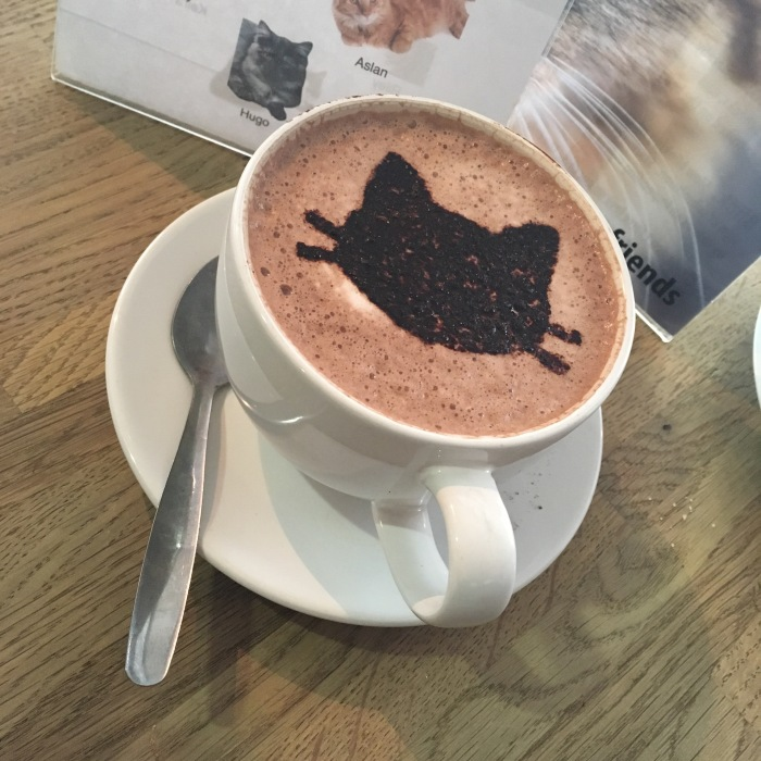 Manchester Cat Cafe coffee art